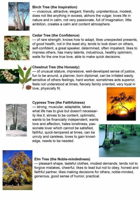 Pokok vs Lahir 2