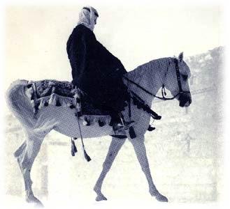 https://mahmudshah.files.wordpress.com/2014/09/fc61c-horse1.jpg?w=468